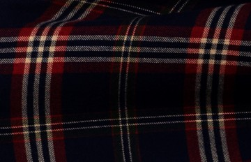 Tartan-Post-Feature